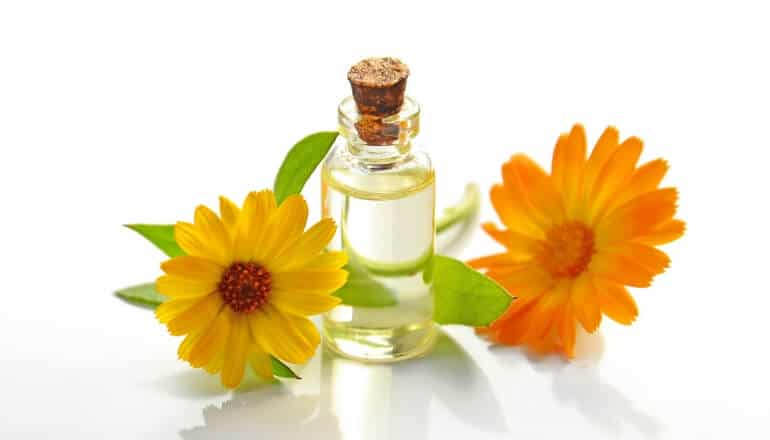 essential oils and yellow flowers on a table