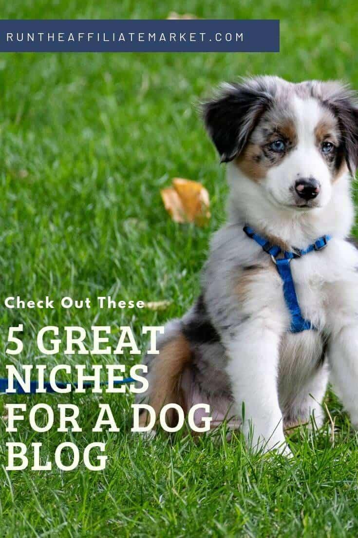 5 profitable dog niches pinterest image