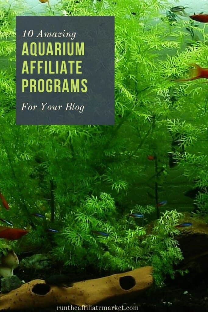 aquarium affiliate programs pinterest image