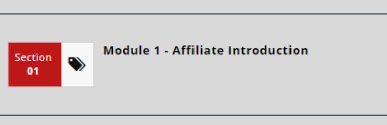 savage affiliate module 1