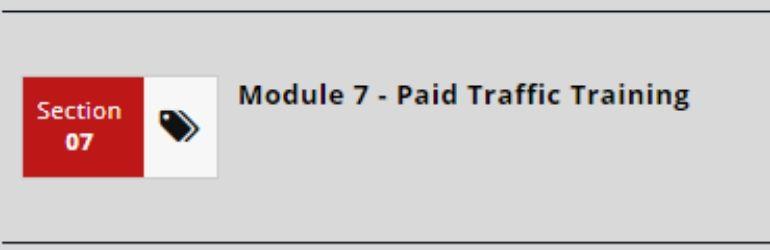 savage affiliates module 7