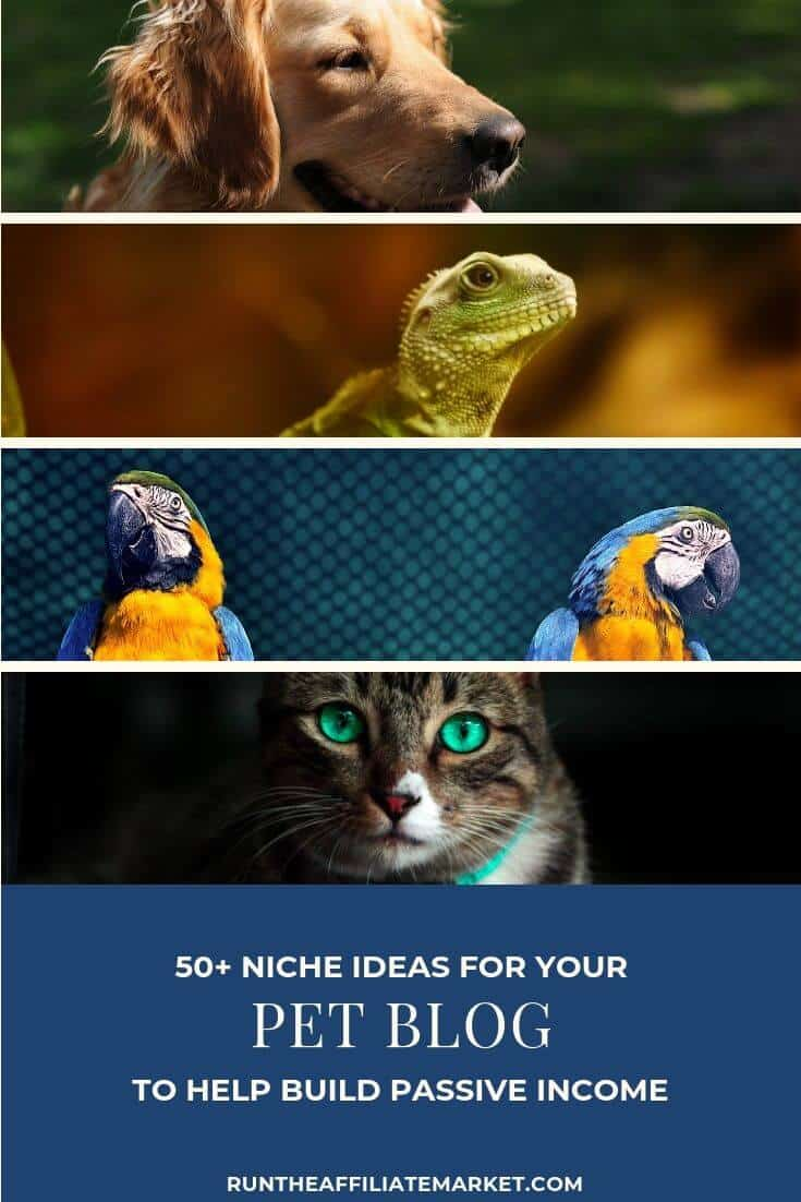 50+ pet blog ideas pinterest image
