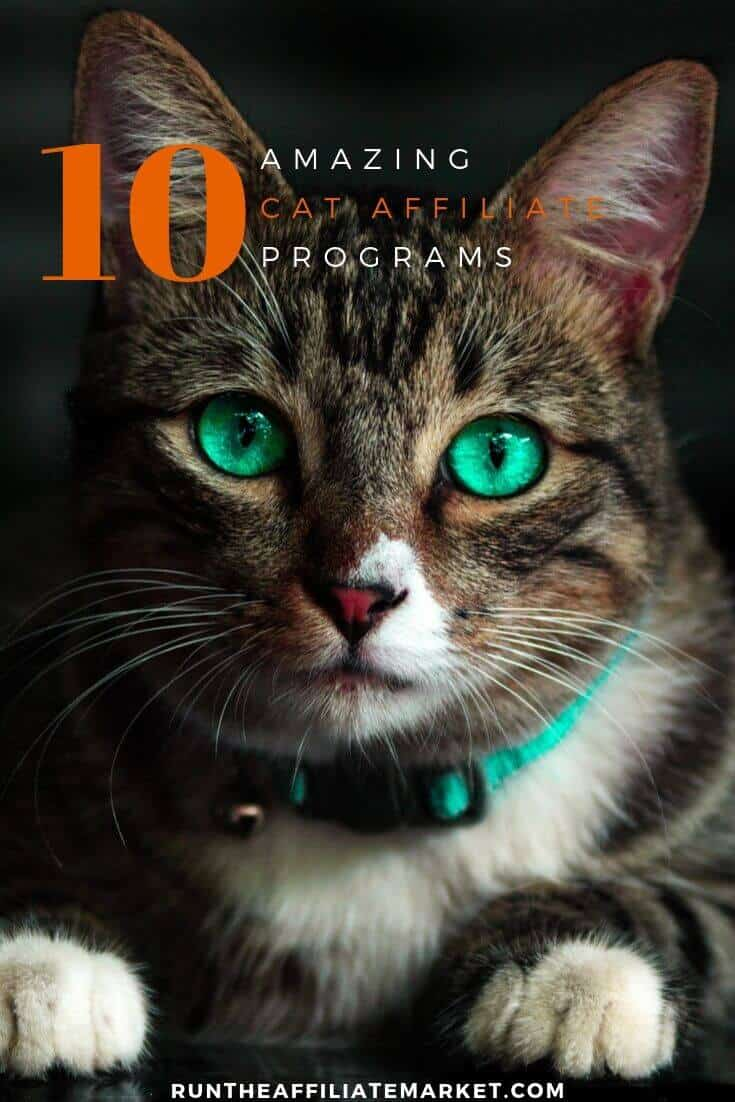cat affiliate programs pinterest image