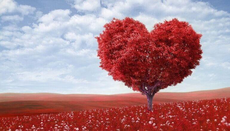 tree shaped like a heart
