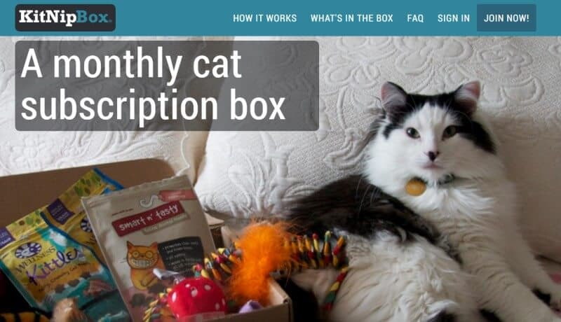 kitnipbox screenshot