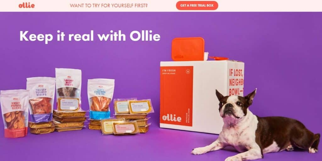 ollie screenshot