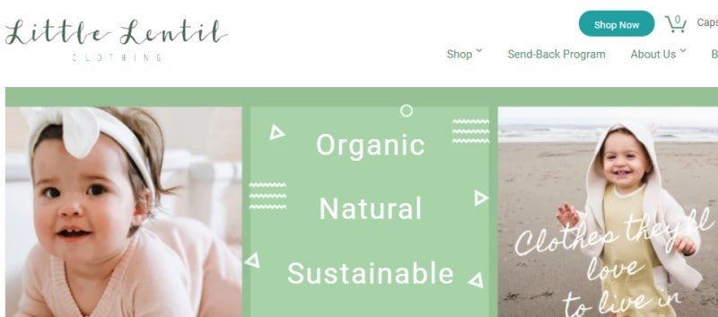 little lentil screenshot of their webpage