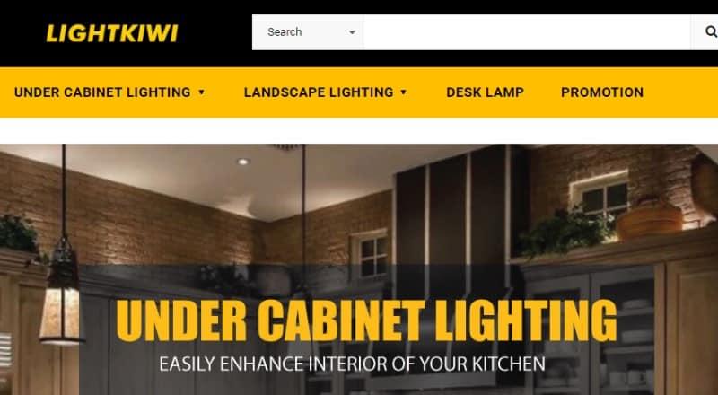screenshot of the lightkiwi website