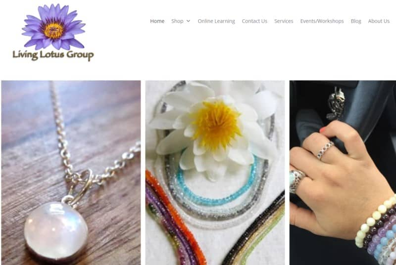 screenshot of the living lotus website