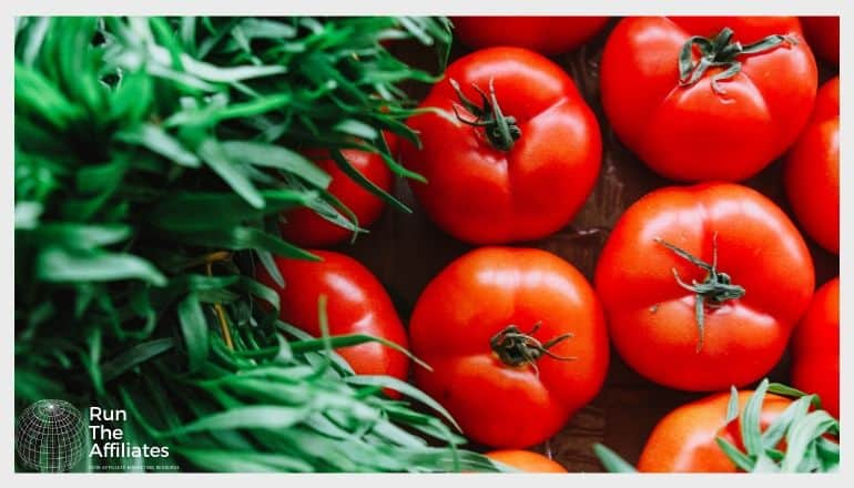 a top down image of herbs and tomatoes