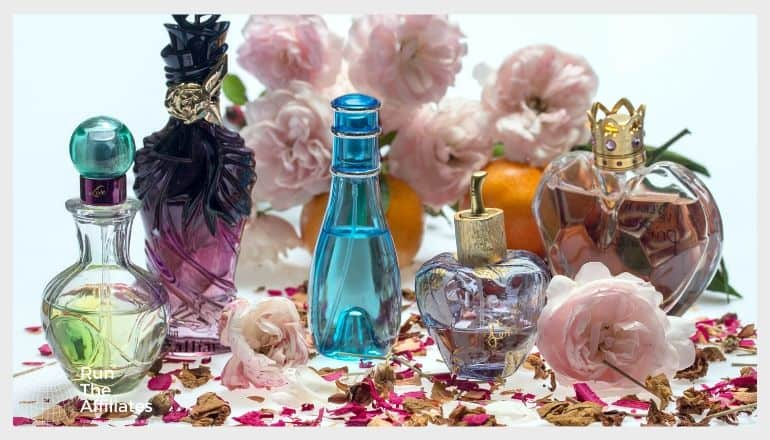 various fragrances in perfume bottles surrounded by flowers