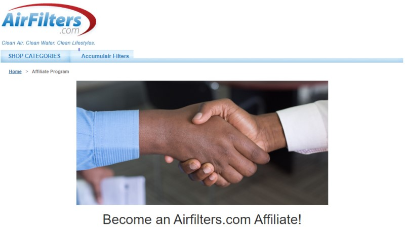 screenshot of the airfilters website