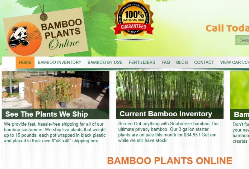 screenshot of the bamboo plants online website