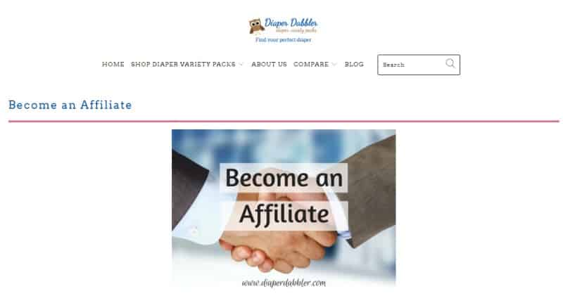screenshot of the diaper dabbler website