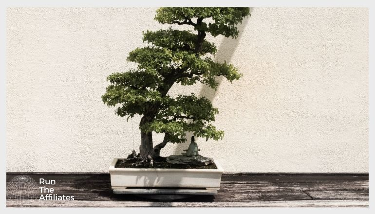 bonsai tree in an off white planter in front of a tan wall