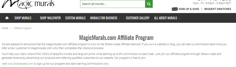 screenshot of the magic murals website