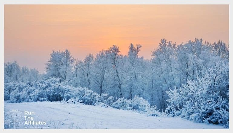 snow covered forest against an orange sky