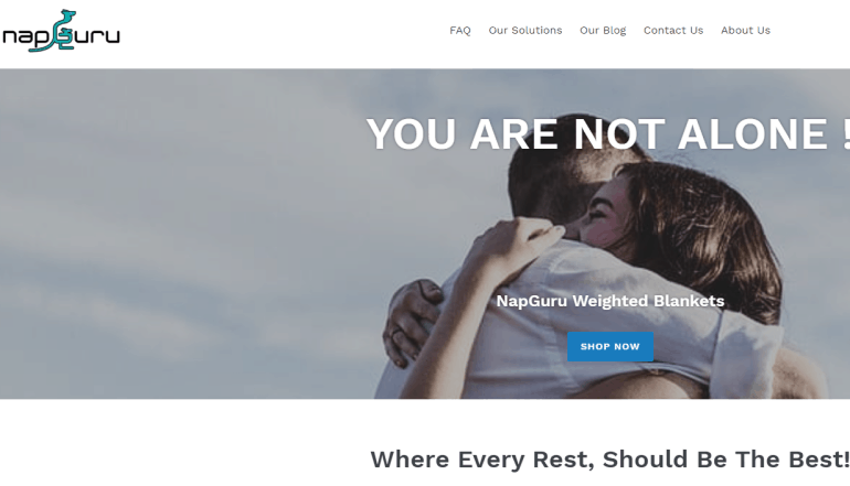 screenshot of the nap guru website