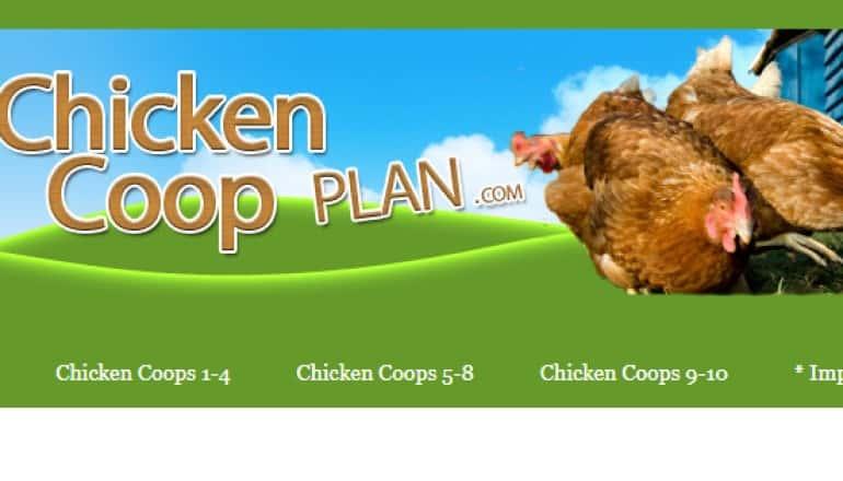 screenshot of the chicken coop plan website
