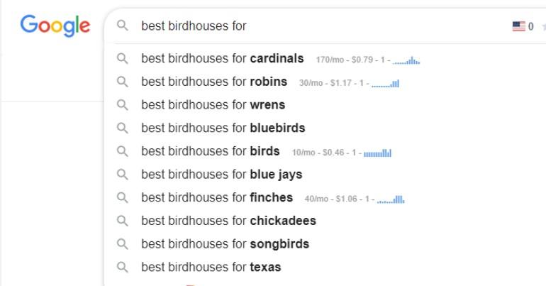 screenshot of google search for micro-niche ideas