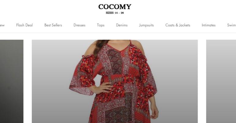 screenshot of the cocomy website